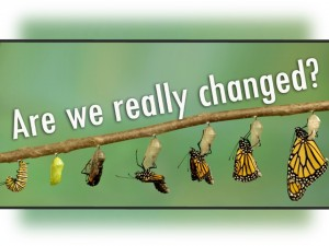 Are We Really Changed - cover slide